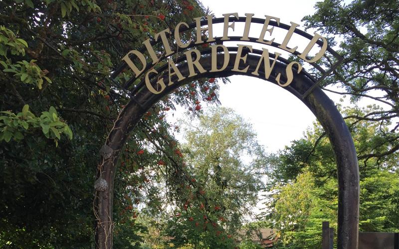 Ditchfield gardens